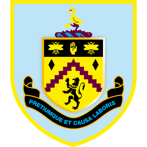 dls 21 burnley logo