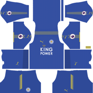 dls 21 leicester city forma